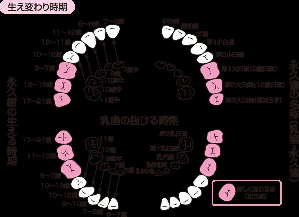 155A26E0-D184-4CA2-BD8E-0A5D380F5D7C